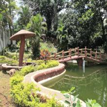 Water fountain & pond