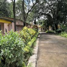 Female area