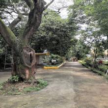 Male Walking Area
